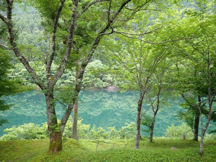 キャンプ場からの眺め