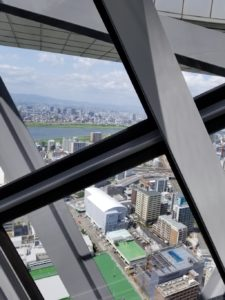 エレベーターからの景色